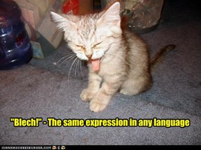"""Blech!"" - The same expression in any language"
