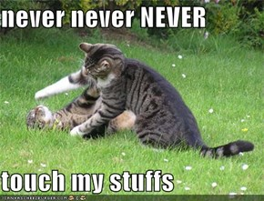 never never NEVER  touch my stuffs