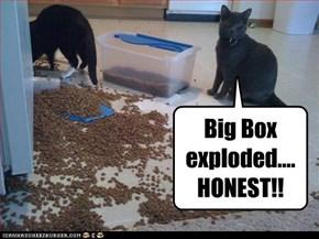Big Box exploded.... HONEST!!