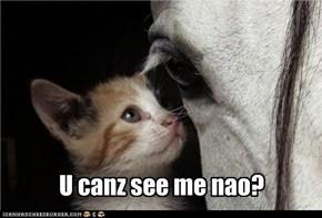 U canz see me nao?
