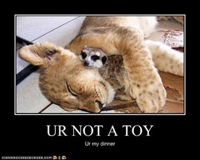 UR NOT A TOY