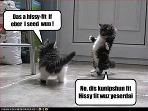 Das a hissy-fit  if  eber  I seed  wun !
