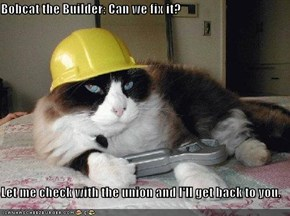 Bobcat the Builder: Can we fix it?  Let me check with the union and I'll get back to you.