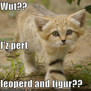 Wut?? I'z pert leoperd and tigur??