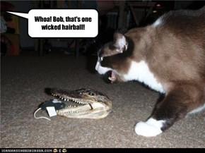 Whoa! Bob, that's one wicked hairball!