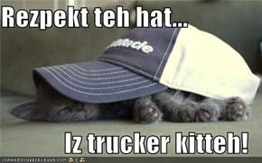 Rezpekt teh hat...  Iz trucker kitteh!