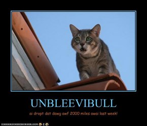 UNBLEEVIBULL