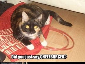 Did you just say CHEEZBURGER?