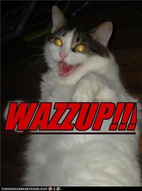 WAZZUP!!!