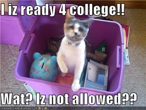 I iz ready 4 college!!  Wat? Iz not allowed??