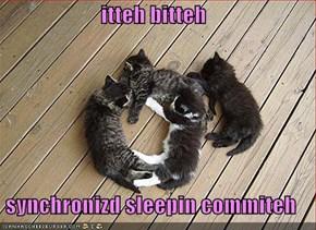itteh bitteh  synchronizd sleepin commiteh