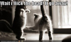 Wait i flick the head! It go away!