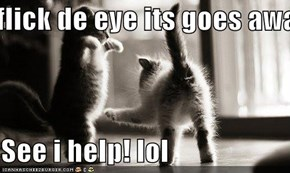 If u flick de eye its goes away!  See i help! lol