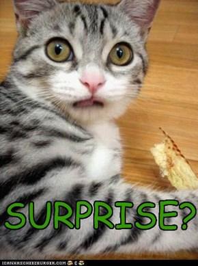 SURPRISE?