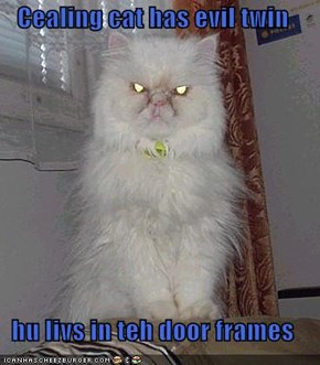 Cealing cat has evil twin  hu livs in teh door frames