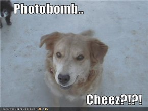 Photobomb..  Cheez?!?!
