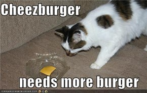 Cheezburger  needs more burger
