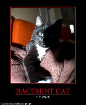 BACEMINT CAT