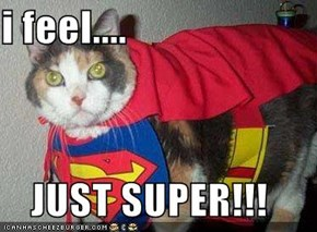 i feel....  JUST SUPER!!!
