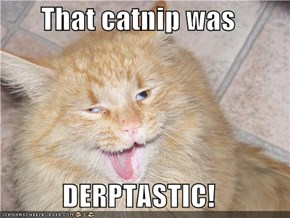 That catnip was  DERPTASTIC!