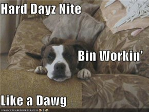 Hard Dayz Nite Bin Workin' Like a Dawg