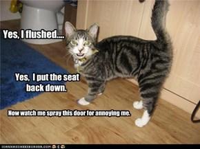 Yes, I flushed....