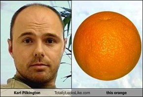 Karl Pilkington Totally Looks Like this orange