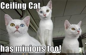 Ceiling Cat  has minions too!