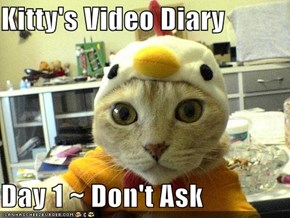 Kitty's Video Diary   Day 1 ~ Don't Ask