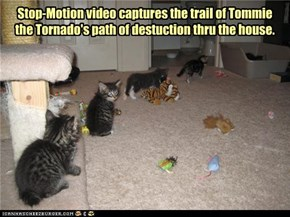 Stop-Motion video captures the trail of Tommie the Tornado's path of destuction thru the house.