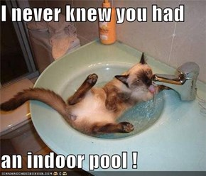 I never knew you had  an indoor pool !