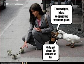 That's right, kids. keep going with the plan