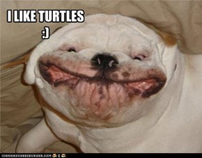 I LIKE TURTLES :)