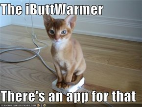 The iButtWarmer  There's an app for that