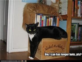 Um, I can has longer boks, pls?