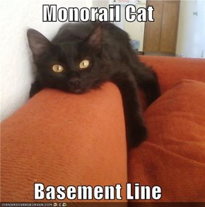 Monorail Cat  Basement Line