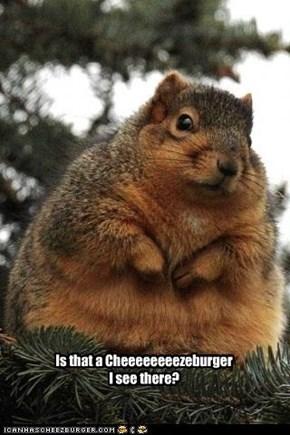 Is that a Cheeeeeeeezeburger I see there?