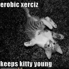 erobic xerciz  keeps kitty young