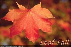 Leaf-Fall