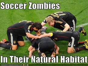Soccer Zombies   In Their Natural Habitat