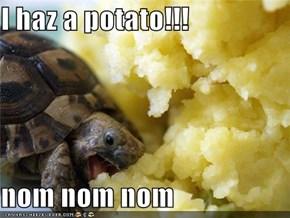 I haz a potato!!!  nom nom nom