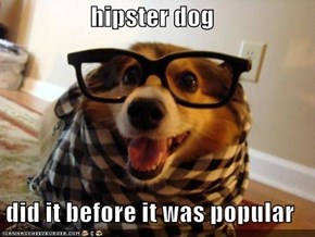 hipster dog  did it before it was popular