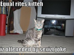 Equal rites kitteh  iz offeneded by sexizt joke