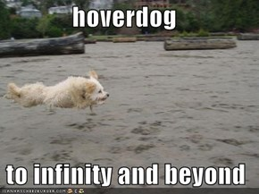 hoverdog   to infinity and beyond