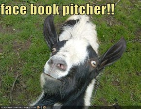 face book pitcher!!