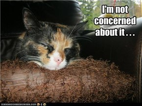 I'm not concerned about it . . .