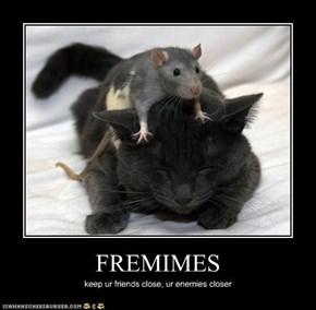 FREMIMES