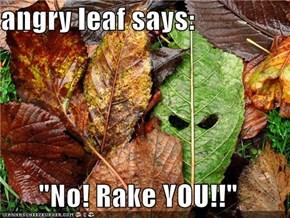 """angry leaf says:  """"No! Rake YOU!!"""""""