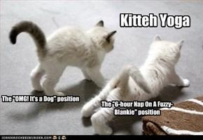 Kitteh Yoga