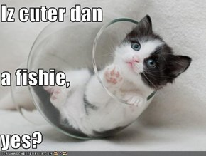 Iz cuter dan a fishie, yes?